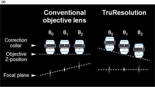 Change of focal plane by rotating correction collar. In case of conventional objective lens, focal plane changes by rotating the correction collar.