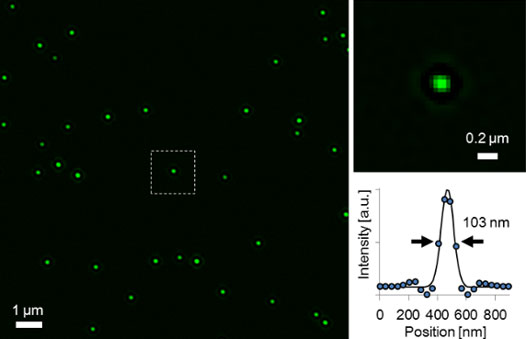 Figure 6. Super resolution image of fluorescent beads (Φ100 nm) acquired by the IXplore SpinSR system and a corresponding intensity profile.