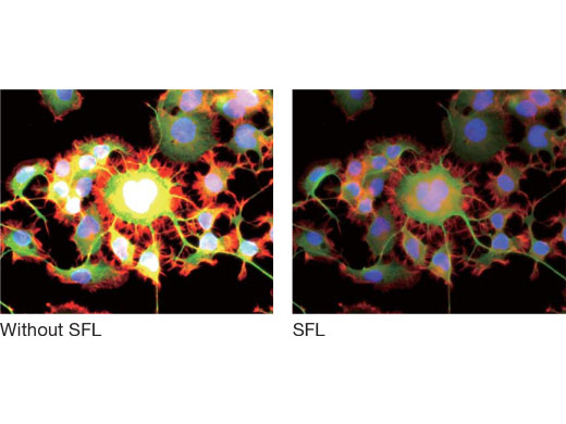 Super Fluorescence (SFL) Mode Optimizes for Correct Exposure