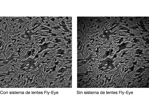 Comparación de lente Fly-eye ausente o integrada