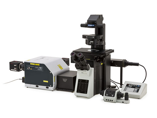 Spinning Disc Confocal System