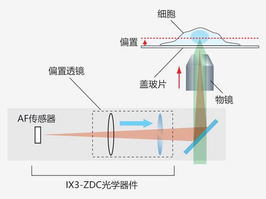 Infrared (IR) Laser Hardware Autofocus Based on the IX83 ZDC