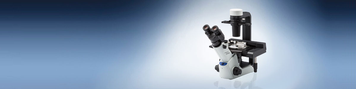 Cell Culture Microscope CKX53 | Olympus Life Science