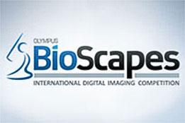 Olympus BioScapes