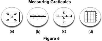 Measuring graticules