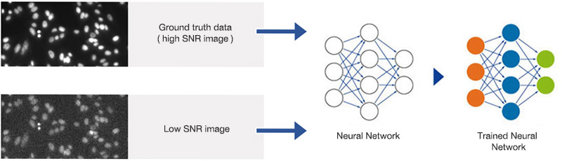 Figure 3 Training the neural network. Pairs of images with high and suboptimal SNR are used to teach the neural network object detection in all SNR conditions.