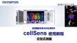cellSens analysis-count and measure01-interactive measurements