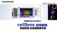 cellSens acquisition-process manager01-multichannel