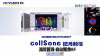 cellSens acquisition-process manager06-autofocus
