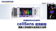 cellSens analysis-use anotation tool to add arrows and text on the images