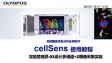 cellSens acquisition-experiment manager-02 mutichannel and Z stacks image acquisition